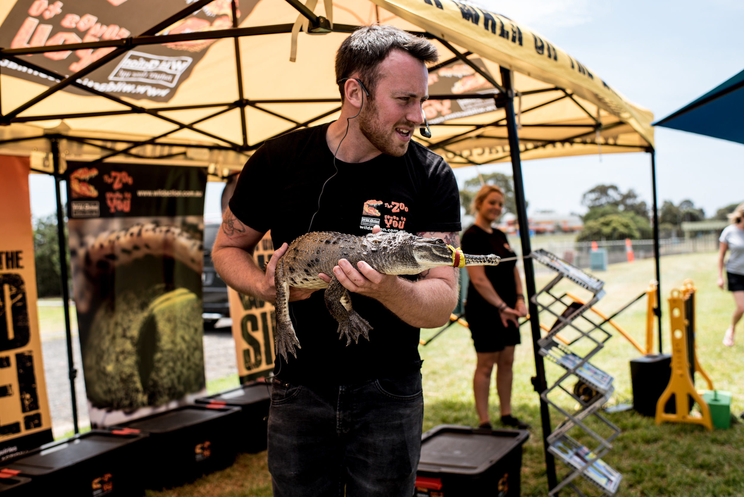 Grounds Pet Shows